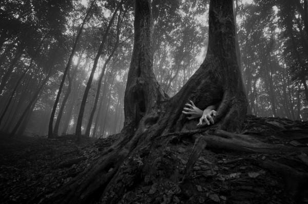 Обида в картинках - Человек, выкарабкивается из дупла черного дерева